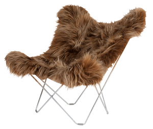 Iceland_Mariposa_Shorn_Brown_Brisa_NY_BIG