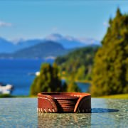 Leather Coasters By Mountain Lake