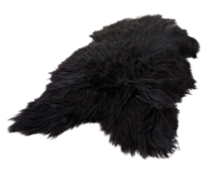 A Black Icelandic Sheepskin With Long Hair