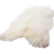 Icelandic Sheepskin, White Icelandic Sheepskin With Long Hair.